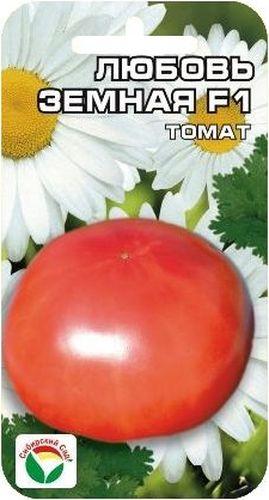 Семена Сибирский сад Томат. Любовь земная, 15 штBP-00000567Ранний крупноплодный очень урожайный гибрид для пленочных теплиц и открытого грунта. Общая урожайность достигает 23-26 кг с 1 м2. От всходов до начала созревания плодов 95-98 дней. Растение мощное, хорошо облиственное, высотой 120-130 см. Первое соцветие закладывается над 5-6 листом. В кисти формируется 5-6 красных округлых плодов, массой 200-260 г, высоких вкусовых качеств. Томаты высокотоварные, выход стандартных плодов 95%. Урожайность за первые два сбора 6-7 кг с 1 м2. При высадке в грунт на 1 м2 высаживается 4 растения. Выращивается в 2 стебля с подвязкой и пасынкованием.