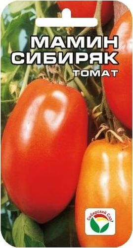 Семена Сибирский сад Томат. Мамин Сибиряк, 20 штBP-00000572Новый высокоурожайный сорт сибирских селекционеров для открытого грунта и пленочных теплиц. Куст высотой 1,2-1,5 м. Плоды красные, перцевидной формы с небольшим утолщением в нижней части, собраны в кисти по 5-7 плодов. В среднем на растении формируется 5-8 кистей. Масса плодов 100-170 г. Сорт обладает великолепными вкусовыми и засолочными качествами, прекрасно подходит для цельноплодного консервирования.Посев на рассаду проводят за 60-70 дней до высадки на постоянное место. Перед посадкой семена замачивают и высевают на глубину 1 см по схеме 3x1,5 см. Оптимальная постоянная температура прорастания семян 23-25°С. Пикировка производится после появления второго настоящего листа. При высадке в грунт на 1 м2 размещают 3-5 растений.Для получения высоких урожаев необходимо обеспечить регулярный полив и подкормки растений в процессе вегетации. Для ускорения процесса всхожести семян, оздоровления растений, улучшения завязываемости плодов рекомендуется пользоваться специально разработанными стимуляторами роста и развития растений.