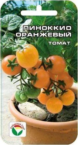Семена Сибирский сад Томат. Пиноккио оранжевыйBP-00000612Среднеспелый карликовый сорт типа черри с компактной формой куста и обильным плодоношением. Рекомендуется для выращивания в комнатных условиях, на балконах и лоджиях. Растение высотой 30-40см. Плоды оранжевые, плоско-округлые, гладкие, мелкие, массой 15-20гр, отличные на вкус.