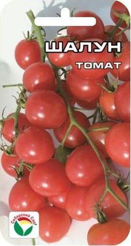 Семена Сибирский сад Томат. Шалун, 20 штBP-00000706Раннеспелый, вишневовидный сорт сибирских селекционеров, формирующий длинные кисти с большим количеством сладких плодов. Растение высокорослое (более 200 см), рекомендуется для выращивания в защищенном грунте. Плоды начинают созревать через 104 дня после появления всходов. В кисти до 30 округлых блестящих малиново-розовых плодов массой 11-14 г, великолепного вкуса и хорошей транспортабельности. Собирают как укороченными кистями, так и отдельными плодами. Свежие черри томаты великолепное лакомство для детей и взрослых, украшение для салатов и фуршетных столов, прекрасно подходят для приготовления вкусного консервированного ассорти. Сорт устойчив к фитофторозу и ВТМ. Урожайность достигает 4,7 кг/м2. Посев на рассаду производят за 50-60 дней до высадки растений на постоянное место. При высадке в грунт на 1 м2 размещают 3 растения. Сорт хорошо реагирует на полив и подкормки комплексными минеральными удобрениями. Выращивается в 1-2 стебля с подвязкой и пасынкованием. При образовании 5-го соцветия удаляют нижние листья, после образования 8 кистей побег прищипывают.