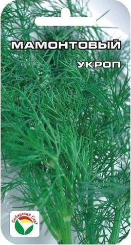 Семена Сибирский сад Укроп. Мамонтовый, 1 гBP-00000740Отличный укроп обильнолиственного типа с поздним заложением зонтиков и длительным периодом хозяйственной годности на зелень. Крупное быстрорастущее растение развивает мощную полуприподнятую розетку листьев с сильным ароматом. Листья крупные - до 20 см, нежные, светло-зеленые, сочные, высокоароматичные. Созревание дружное. Урожайность зеленой массы 1,8-3 кг/м2. Рекомендуется для сушки, замораживания, приготовления разнообразных приправ, засолки и маринования. Выращивается прямым, разреженным посевом семян в грунт. Семена высевают рядами на расстоянии 10 см на глубину 0,5 см, загущенные посевы необходимо прореживать. Полив регулярный.