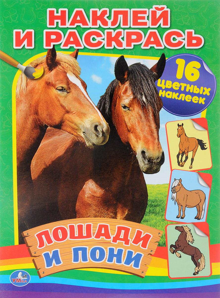 Лошади и пони. Раскраска (+ 16 наклеек)