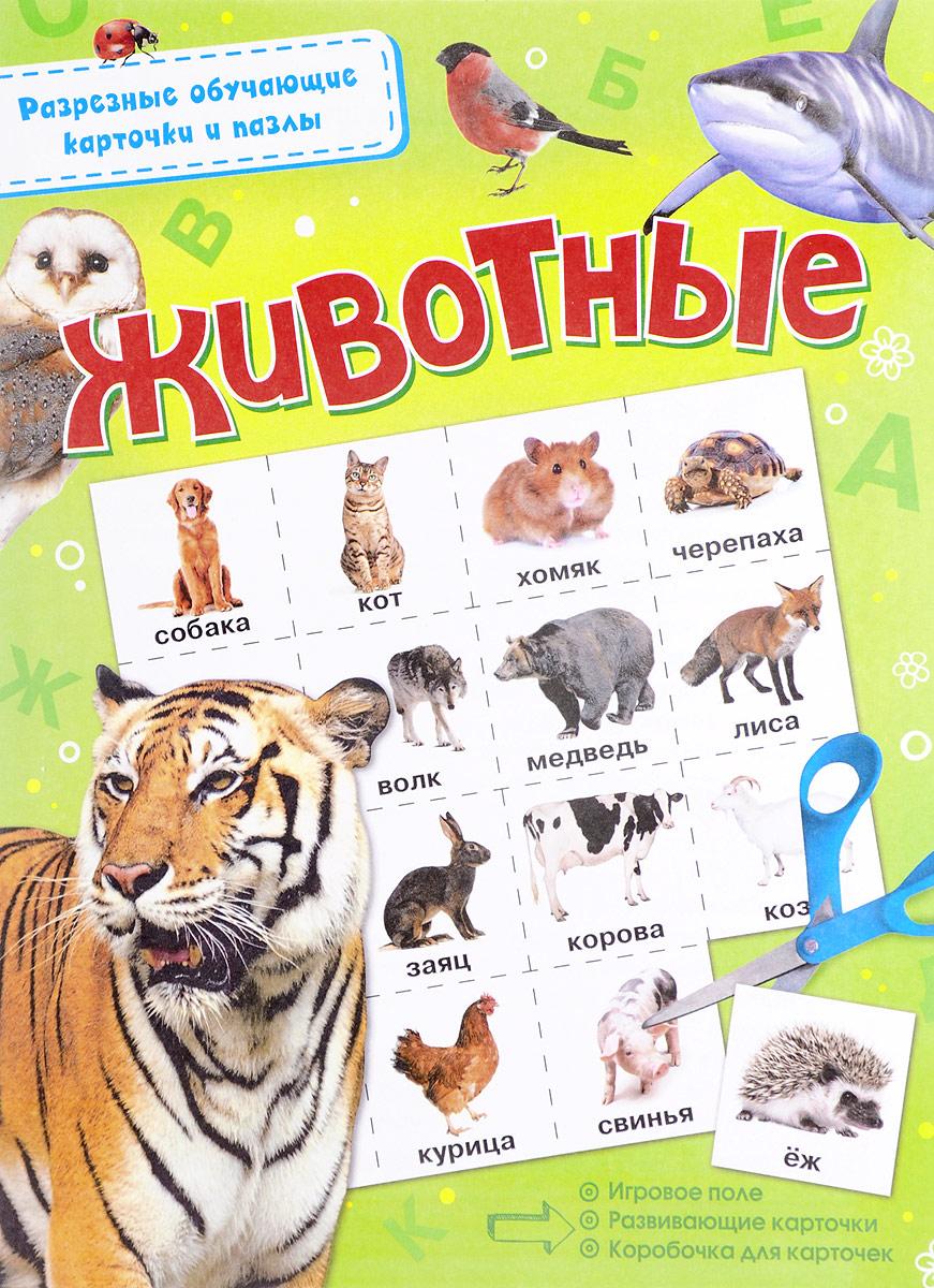 Животные улыбка обучающие карточки игрушки