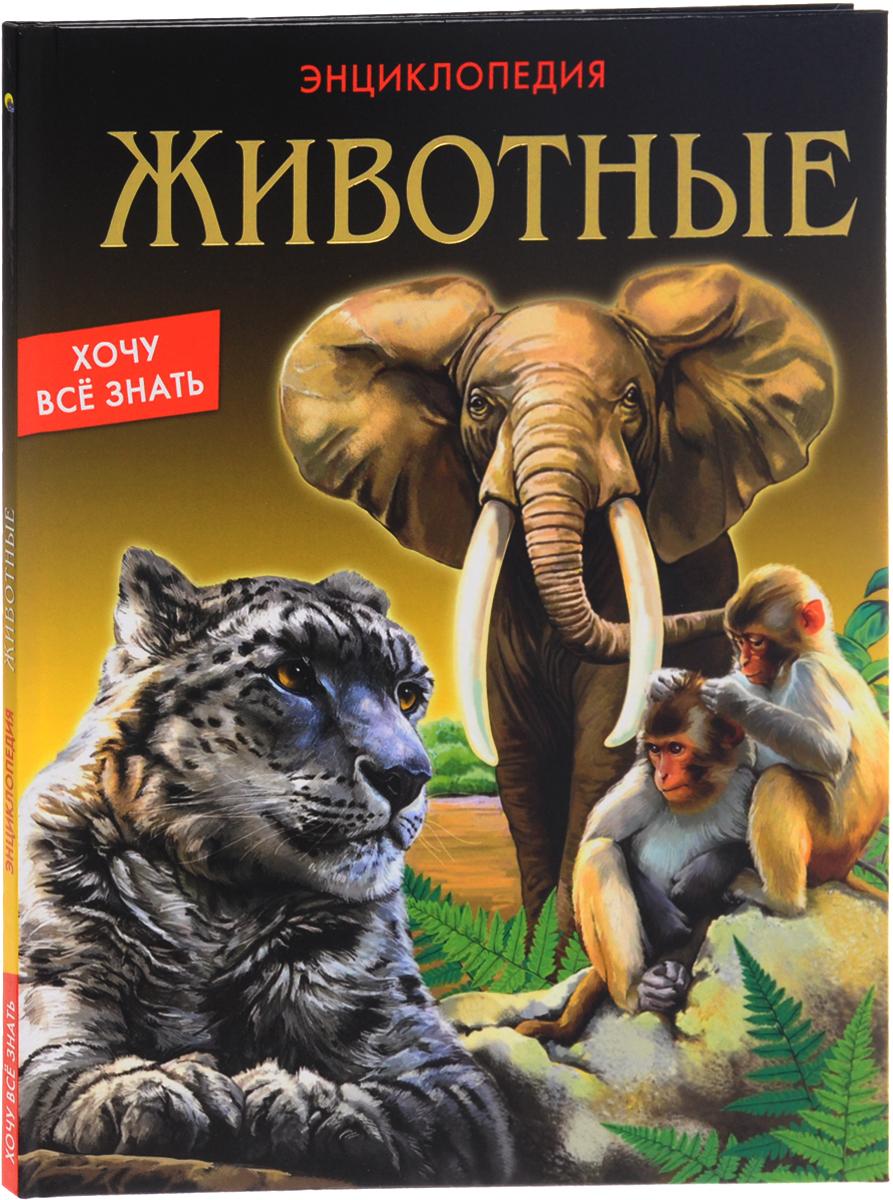 Ярослава Соколова Животные игорь акимушкин приматы моря