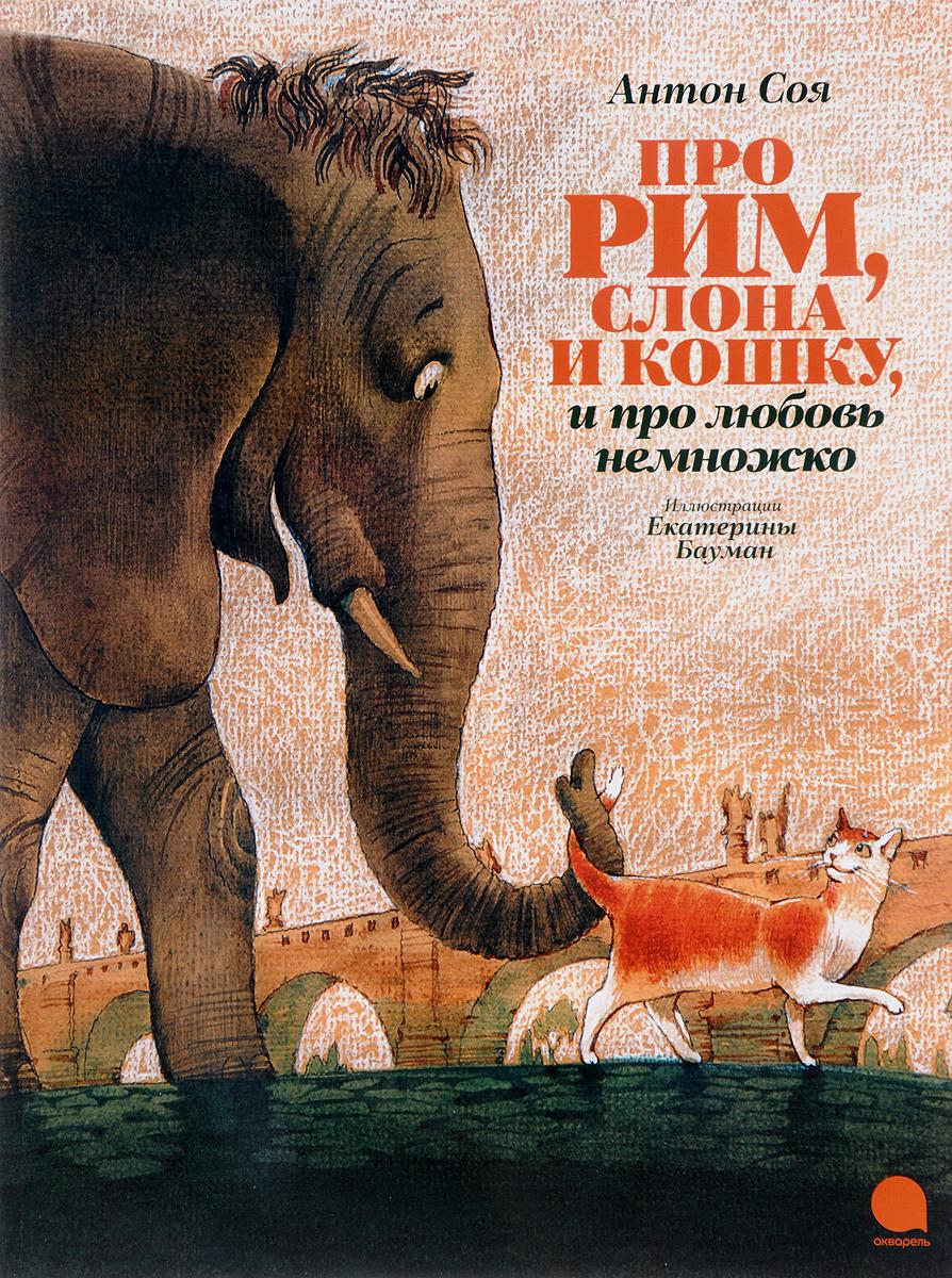 Антон Соя Про Рим, слона и кошку и про любовь немножко пророщенная соя где в омске