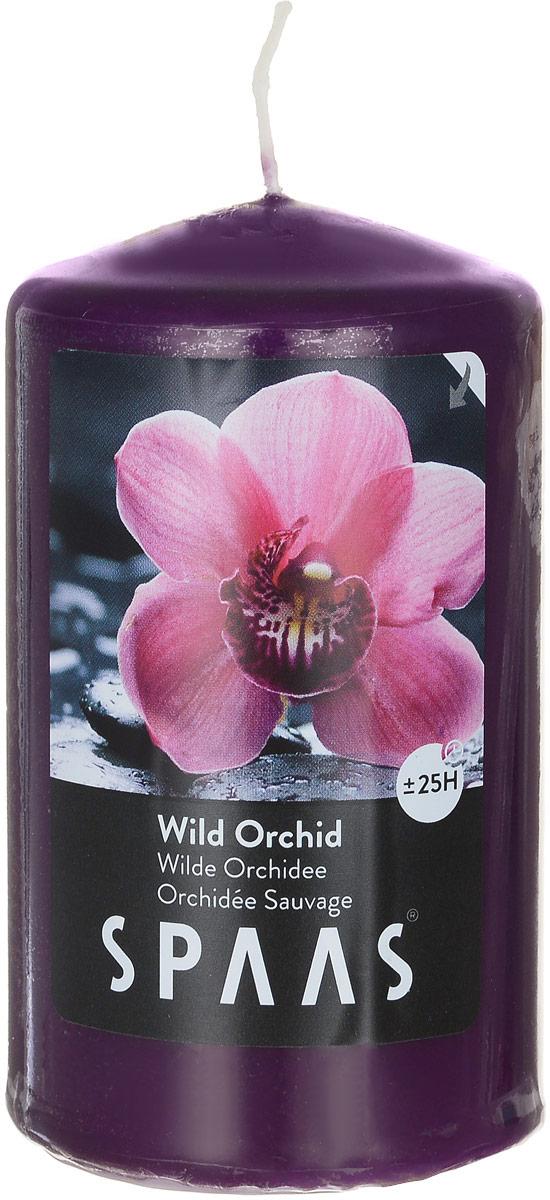 """Ароматизированная свеча Spaas """"Дикая орхидея"""" изготовлена из парафина с добавлением натуральных красок и ароматизаторов, не выделяющих вредные вещества при горении. Фитиль выполнен из натурального хлопка. Оригинальная свеча с тонким, нежным ароматом добавит романтики в ваш дом и создаст неповторимую атмосферу уюта, тепла и нежности. Такая свеча не только поможет дополнить интерьер вашей комнаты, но и станет отличным подарком. Время горения: 25 ч."""