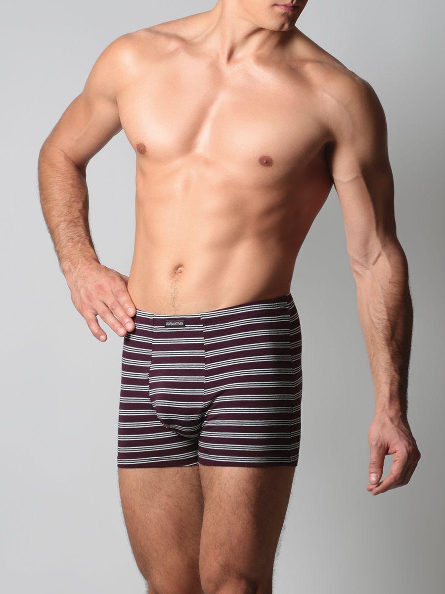 Трусы-боксеры мужские Charmante, цвет: серый, бордовый. ICMBX 681602C. Размер M (48) спицы прямые алюминиевые с покрытием 35см 5 0мм 940250 940205