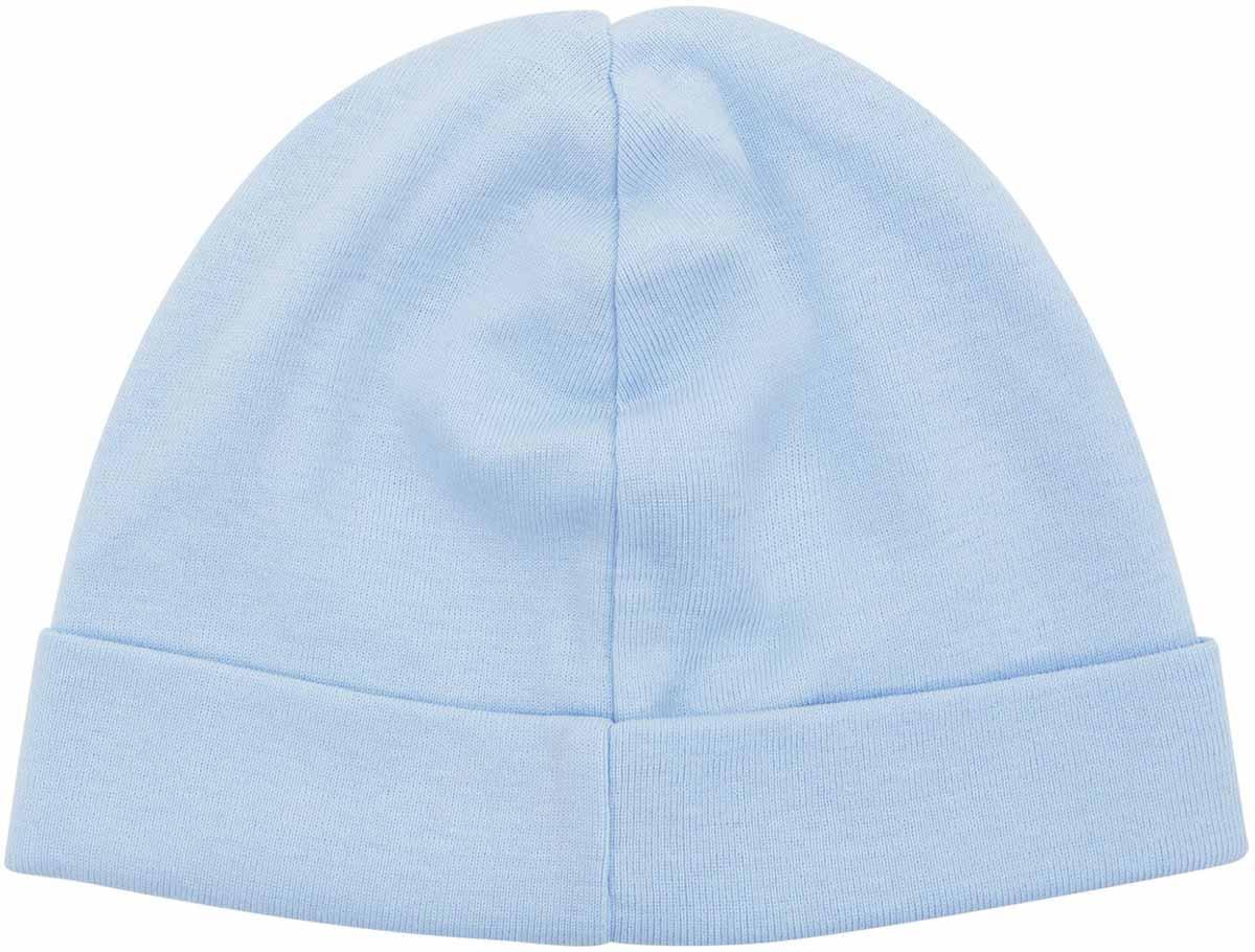 Чепчик для мальчиков Axiome De Mode, цвет: голубой, 2 шт. 16-8103. Размер 3716-8103