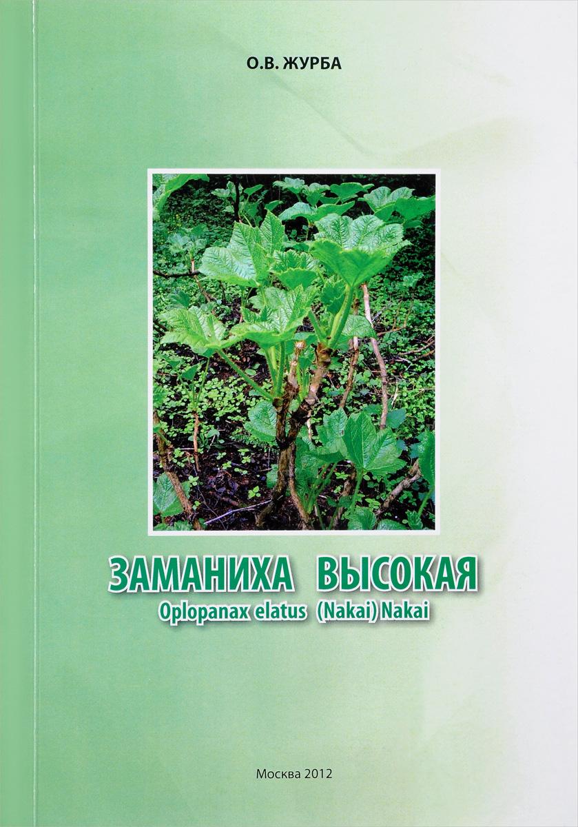 О. В. Журба Заманиха высокая / Oplopanax elatus (Nakai) Nakai