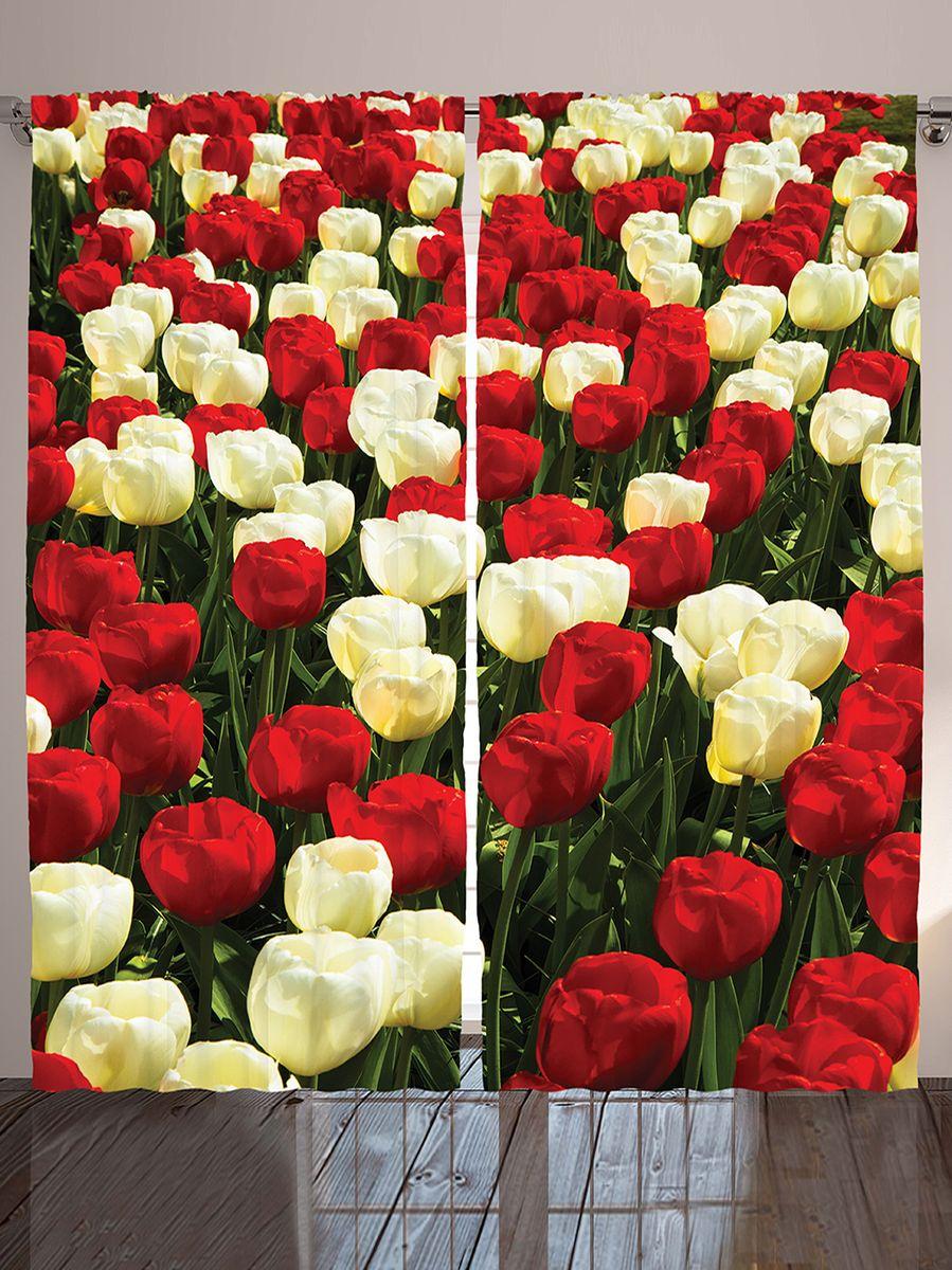 """Комплект фотоштор Magic Lady """"Тюльпановое поле"""", на ленте, высота 265 см. шсг_10332"""
