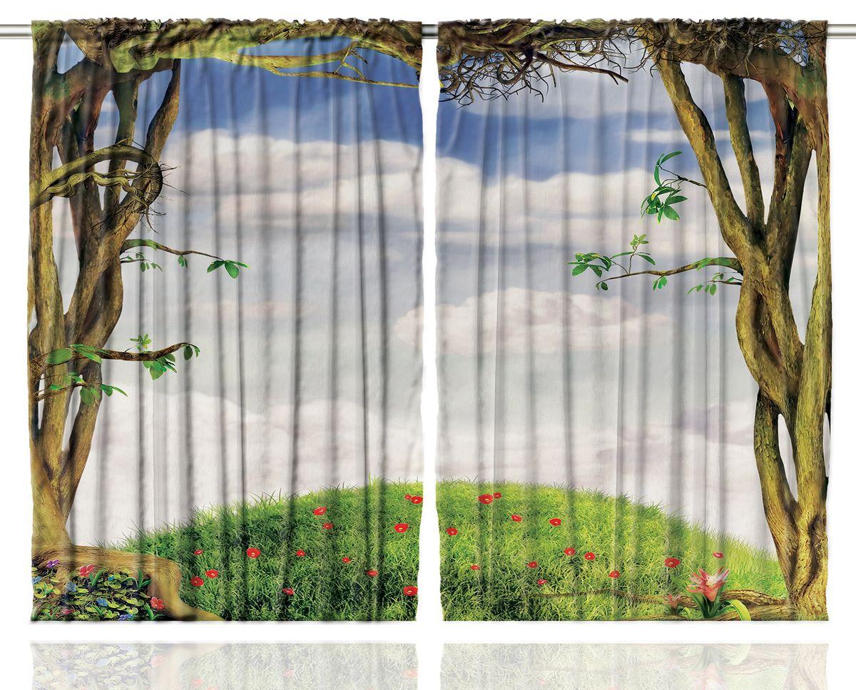 Комплект фотоштор Magic Lady Облака над холмом, на ленте, высота 265 см. шсг_150121164Роскошный комплект фотоштор Magic Lady Облака над холмом, выполненный из высококачественного сатена (полиэстер 100%), великолепно украсит любое окно. При изготовлении используются специальные гипоаллергенные чернила. Комплект состоит из двух фотоштор и декорирован изящным рисунком. Оригинальный дизайн и цветовая гамма привлекут к себе внимание и органично впишутся в интерьер комнаты. Крепление на карниз при помощи шторной ленты на крючки.