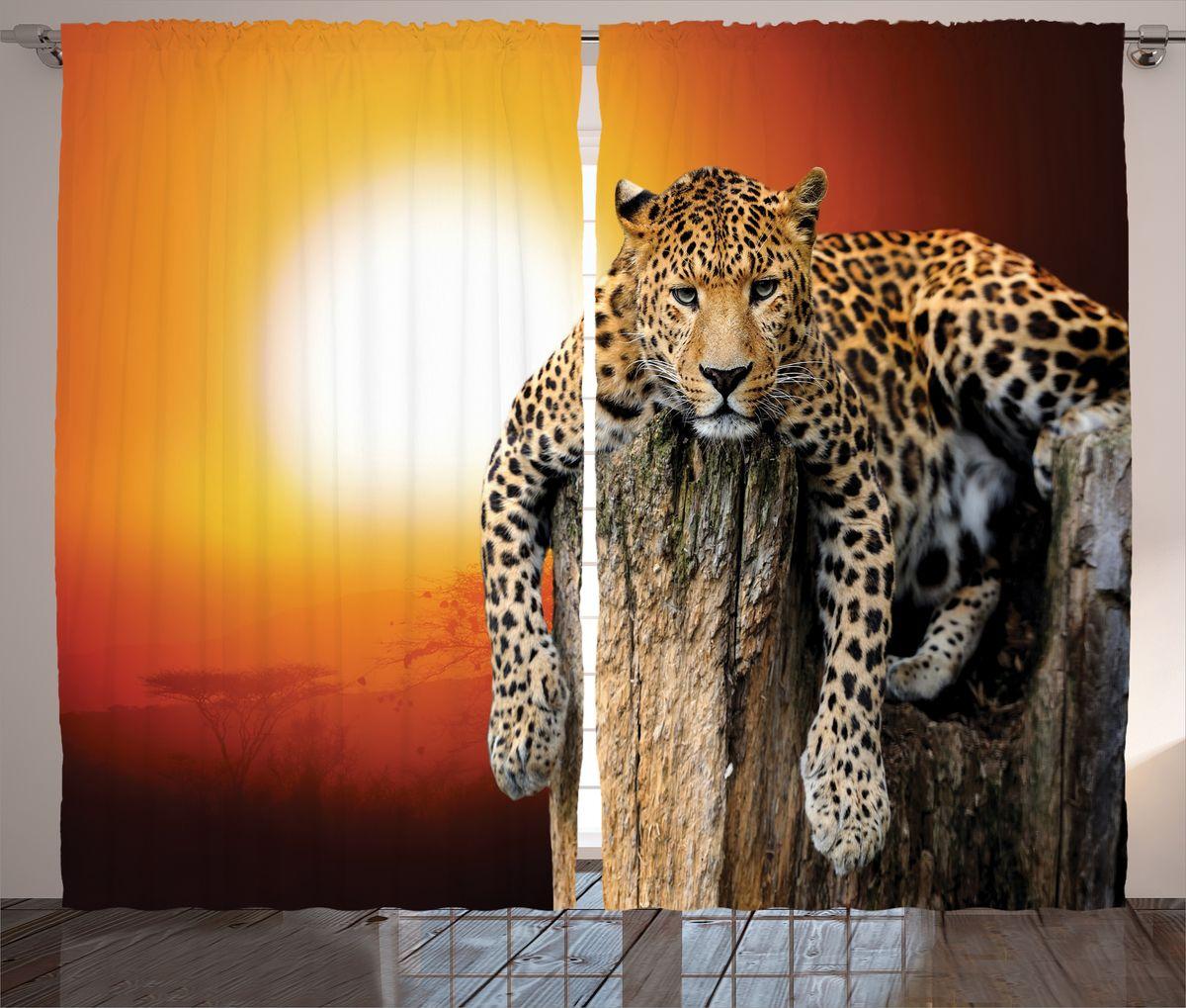 Комплект фотоштор Magic Lady, на ленте, высота 265 см. шсг_16487шсг_16487Роскошный комплект фотоштор Magic Lady, выполненный из высококачественного сатена (полиэстер 100%), великолепно украсит любое окно. При изготовлении используются специальные гипоаллергенные чернила. Комплект состоит из двух фотоштор и декорирован изящным рисунком. Оригинальный дизайн и цветовая гамма привлекут к себе внимание и органично впишутся в интерьер комнаты. Крепление на карниз при помощи шторной ленты на крючки.