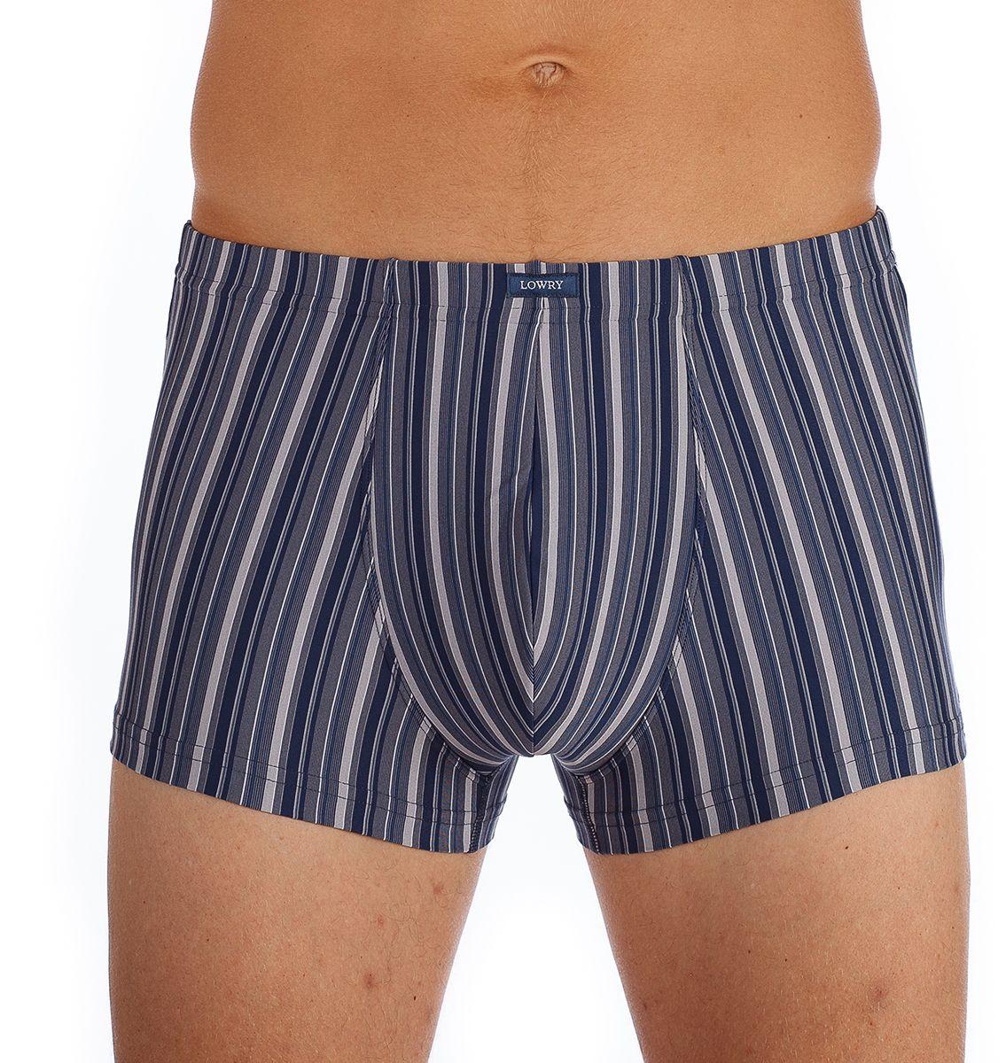 Трусы-боксеры мужские Lowry, цвет: синий, серый. MSHL-403. Размер L (48) трусы lowry трусы 3 шт