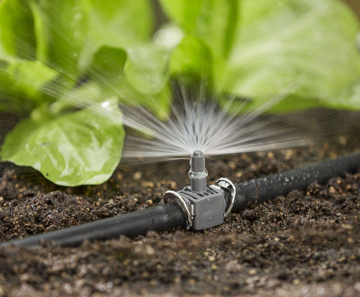 поливочная система для огорода своими руками фото благовещенской это