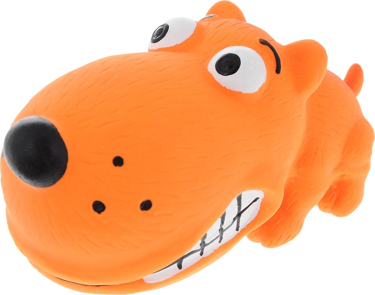 Игрушка для собак Dezzie Забавный пес, с пищалкой, длина 8 см5620075Очаровательная игрушка Dezzie Забавный пес обеспечит веселый досуг вашей собаке. Она безопасна для здоровья животного. Латекс не твердеет под действием желудочного сока, поэтому игрушку можно смело покупать даже самым маленьким щенкам. В песика встроена пищалка. С такой игрушкой ваш питомец точно не будет скучать.Длина игрушки: 8 см.