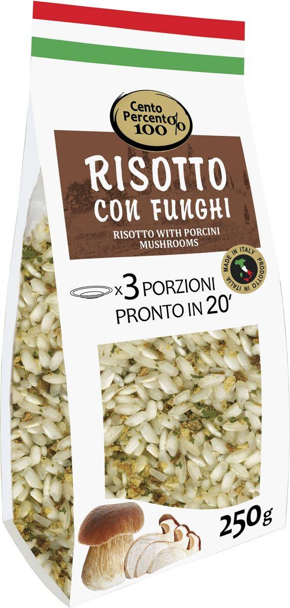 Cento Percento ризотто с белыми грибами, 250 г18475Приготовить настоящее итальянское ризотто теперь легко! В этом вам поможет ризотто Cento Percento. Ризотто Cento Percento - это продукт, полностью произведенный в Италии. Ризотто с грибами - это среднезерный итальянский рис Карнароли, белые сушеные грибы Порчини крупной фракции, а также специи и приправы. 20 минут - и 3 порции настоящего итальянского ризотто готовы!