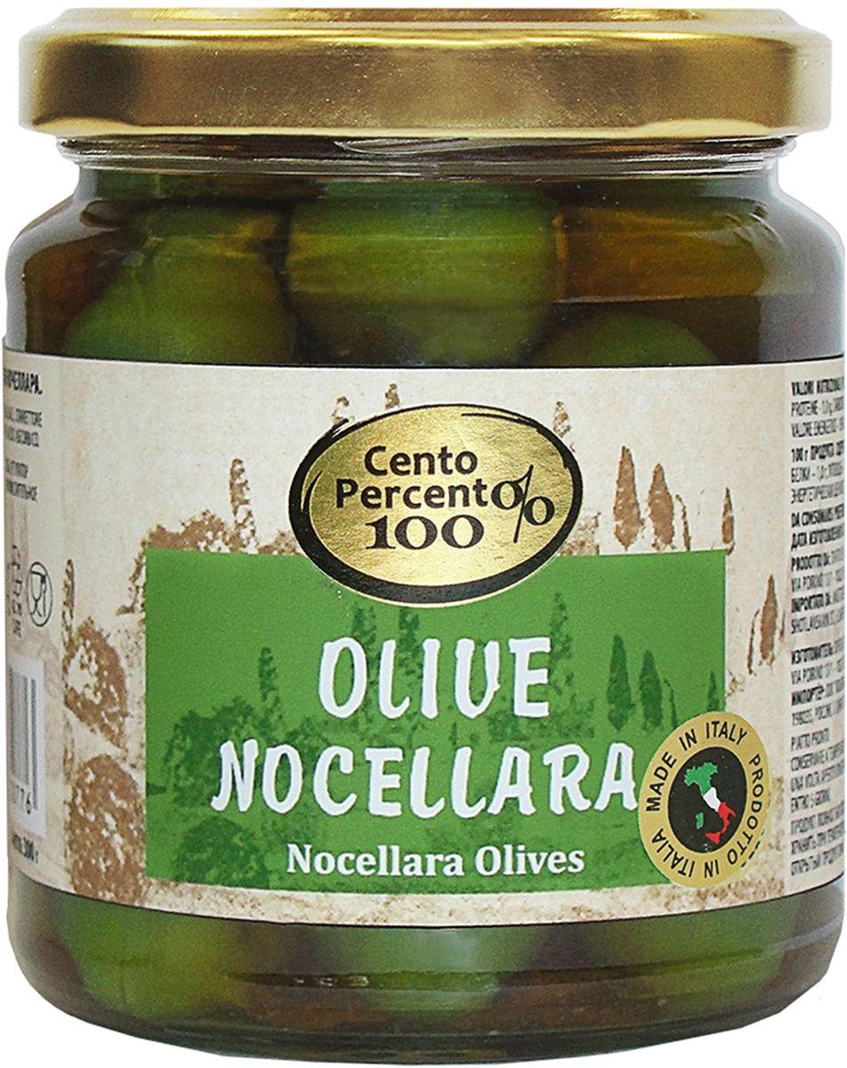 Cento Percento оливки Ночеллара, 300 г guerola оливки сорта арбекина с косточкой 370 г