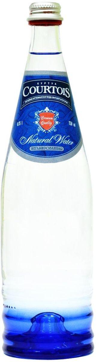 Courtois питьевая артезианская вода высшей категории негазированная, 0,75 л фруто няня сок фрутоняня малышам яблочный 0 2 л