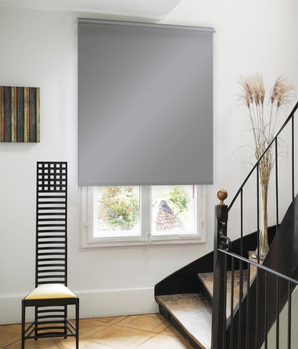 Штора рулонная Эскар, цвет: серый, ширина 80 см, высота 170 см81020080170Рулонными шторами можно оформлять окна как самостоятельно, так и использовать в комбинации с портьерами. Это поможет предотвратить выгорание дорогой ткани на солнце и соединит функционал рулонных с красотой навесных.Преимущества применения рулонных штор для пластиковых окон:- имеют прекрасный внешний вид: многообразие и фактурность материала изделия отлично смотрятся в любом интерьере; - многофункциональны: есть возможность подобрать шторы способные эффективно защитить комнату от солнца, при этом о на не будет слишком темной. - Есть возможность осуществить быстрый монтаж. ВНИМАНИЕ! Размеры ширины изделия указаны по ширине ткани!Во время эксплуатации не рекомендуется полностью разматывать рулон, чтобы не оторвать ткань от намоточного вала.В случае загрязнения поверхности ткани, чистку шторы проводят одним из способов, в зависимости от типа загрязнения: легкое поверхностное загрязнение можно удалить при помощи канцелярского ластика; чистка от пыли производится сухим методом при помощи пылесоса с мягкой щеткой-насадкой; для удаления пятна используйте мягкую губку с пенообразующим неагрессивным моющим средством или пятновыводитель на натуральной основе (нельзя применять растворители).