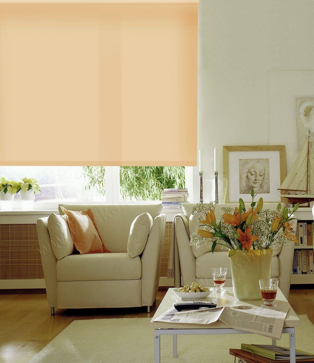 Штора рулонная Эскар Ролло. Однотонные, цвет: светлый абрикос, ширина 80 см, высота 170 см81112080170Рулонными шторами можно оформлять окна как самостоятельно, так и использовать в комбинации с портьерами. Это поможет предотвратить выгорание дорогой ткани на солнце и соединит функционал рулонных с красотой навесных.Преимущества применения рулонных штор для пластиковых окон:- имеют прекрасный внешний вид: многообразие и фактурность материала изделия отлично смотрятся в любом интерьере; - многофункциональны: есть возможность подобрать шторы способные эффективно защитить комнату от солнца, при этом о на не будет слишком темной. - Есть возможность осуществить быстрый монтаж. ВНИМАНИЕ! Размеры ширины изделия указаны по ширине ткани!Во время эксплуатации не рекомендуется полностью разматывать рулон, чтобы не оторвать ткань от намоточного вала.В случае загрязнения поверхности ткани, чистку шторы проводят одним из способов, в зависимости от типа загрязнения: легкое поверхностное загрязнение можно удалить при помощи канцелярского ластика; чистка от пыли производится сухим методом при помощи пылесоса с мягкой щеткой-насадкой; для удаления пятна используйте мягкую губку с пенообразующим неагрессивным моющим средством или пятновыводитель на натуральной основе (нельзя применять растворители).