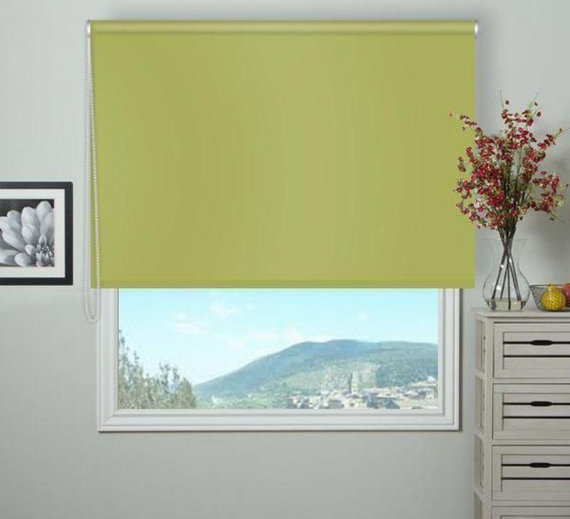 Штора рулонная Эскар Blackout, светонепроницаемая, цвет: оливковый, ширина 150 см, высота 170 см84080150170Рулонными шторами можно оформлять окна как самостоятельно, так и использовать в комбинации с портьерами. Это поможет предотвратить выгорание дорогой ткани на солнце и соединит функционал рулонных с красотой навесных.Преимущества применения рулонных штор для пластиковых окон:- имеют прекрасный внешний вид: многообразие и фактурность материала изделия отлично смотрятся в любом интерьере; - многофункциональны: есть возможность подобрать шторы способные эффективно защитить комнату от солнца, при этом она не будет слишком темной.- Есть возможность осуществить быстрый монтаж.ВНИМАНИЕ! Размеры ширины изделия указаны по ширине ткани!Во время эксплуатации не рекомендуется полностью разматывать рулон, чтобы не оторвать ткань от намоточного вала.В случае загрязнения поверхности ткани, чистку шторы проводят одним из способов, в зависимости от типа загрязнения: легкое поверхностное загрязнение можно удалить при помощи канцелярского ластика; чистка от пыли производится сухим методом при помощи пылесоса с мягкой щеткой-насадкой; для удаления пятна используйте мягкую губку с пенообразующим неагрессивным моющим средством или пятновыводитель на натуральной основе (нельзя применять растворители).