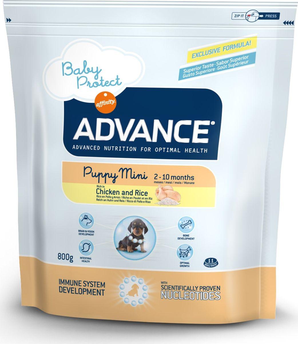 Корм сухой Advance Baby Protect Mini для щенков малых пород с 2 до 10 месяцев, 0,8 кг13043/501110Advance - высококачественный корм супер-премиум класса испанской компании Affinity Petcare, которая занимает лидирующие места на европейском и мировом рынках. Корм разработан с учетом всех особенностей развития и жизнедеятельности собак и кошек. В линейке кормов Advance любой хозяин может подобрать необходимое питание в соответствии с возрастом и уникальными особенностями своего животного, а также в случае назначения специалистами ветеринарной диеты. Affinity Petcare имеет собственную лабораторию, а также сотрудничает с множеством международных исследовательских центров, благодаря чему специалисты постоянно совершенствуют рецептуру и полезные свойства своих кормов. В составе главным источником белка является СВЕЖЕЕ мясо, благодаря которому корм обладает высокими вкусовыми качествами, а также высокой питательной ценностью. Advance Baby Protect Mini - высококачественный сбалансированный корм, специально разработанный для щенков (от 2 до 8 месяцев) мини-пород (вес взрослой собаки до 10 кг), а также для беременных и кормящих собак. Эксклюзивная формула, содержащая нуклеотиды, которая помогает повысить эффективность репликации клеток и обеспечивает оптимальное развитие тканей растущих щенков. Ускоренный эффект репликации клеток позволяет активизировать иммунную систему, усиливая защитный барьер организма против бактерий, вирусов и других патогенов. Корм с содержанием пребиотиков, пробиотиков и иммуноглобулинами для правильного развития и защиты желудочно-кишечного тракта.Состав: курица (20%), рис (17%), дегидрированное мясо курицы, мука из маиса, животный жир, маис, пшеница, гидролизованный белок животного происхождения, свекольный жом, рыбий жир, яичный порошок, дрожжи, плазменный протеин, хлористый калий, соль, трикальцийфосфат, нуклеотиды.Анализ: протеин 30%, жиры 21%, сырые волокна 2,5%, неорганическое вещество 7%, кальций 1,2%, фосфор 1%, влажность 8%.Энергетическая ценн