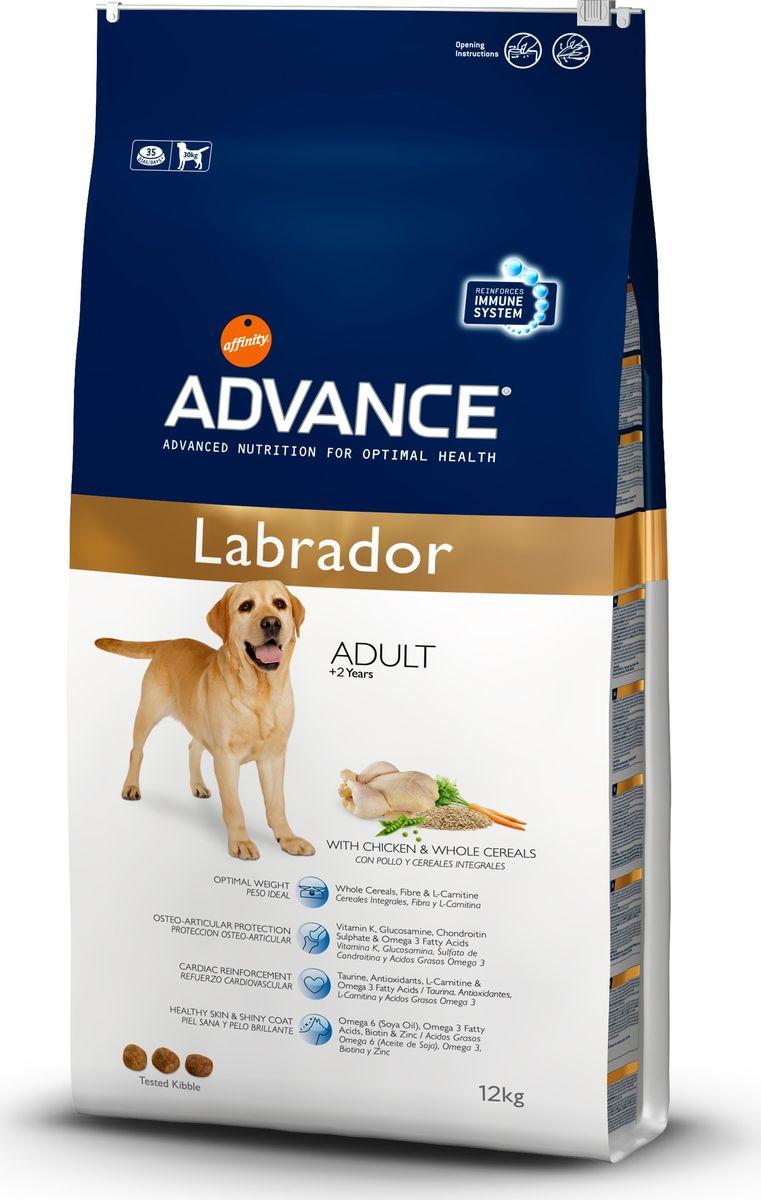 Корм сухой Advance Labrador Retriever для золотистых ретриверов и лабрадоров, 12 кг13073/536510Advance - высококачественный корм супер-премиум класса испанской компании Affinity Petcare, которая занимает лидирующие места на европейском и мировом рынках. Корм разработан с учетом всех особенностей развития и жизнедеятельности собак и кошек. В линейке кормов Advance любой хозяин может подобрать необходимое питание в соответствии с возрастом и уникальными особенностями своего животного, а также в случае назначения специалистами ветеринарной диеты. Affinity Petcare имеет собственную лабораторию, а также сотрудничает с множеством международных исследовательских центров, благодаря чему специалисты постоянно совершенствуют рецептуру и полезные свойства своих кормов. В составе главным источником белка является СВЕЖЕЕ мясо, благодаря которому корм обладает высокими вкусовыми качествами, а также высокой питательной ценностью. Анализ: протеин 29%, жиры 14%, сырые волокна 3,7%, неорганическое вещество 6%, кальций 1%, фосфор 0,9%, влажность 9%.Энергетическая ценность 3581 ккал/кг. Товар сертифицирован.