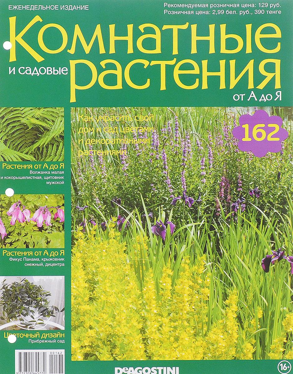 Журнал Комнатные и садовые растения. От А до Я №162 лесоповал я куплю тебе дом lp