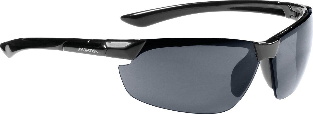 Очки солнцезащитные Alpina Draff, цвет: черный. 8558331 очки горнолыжные alpina carat sh цвет черный белый