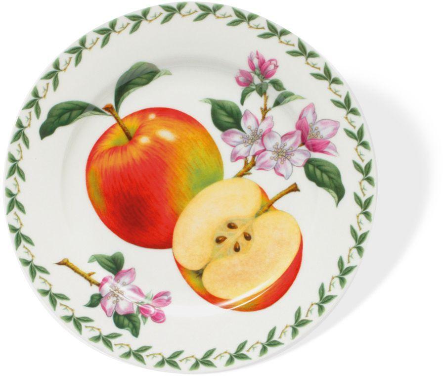 Тарелка Maxwell & Williams Яблоко, диаметр 20 см216693Тарелка Maxwell & Williams Яблоко выполнена из высококачественного фарфора и имеет классическую круглую форму. Она прекрасно впишется в интерьер вашей кухни и станет достойным дополнением к кухонному инвентарю. Она подчеркнет прекрасный вкус хозяйки и станет отличным подарком.