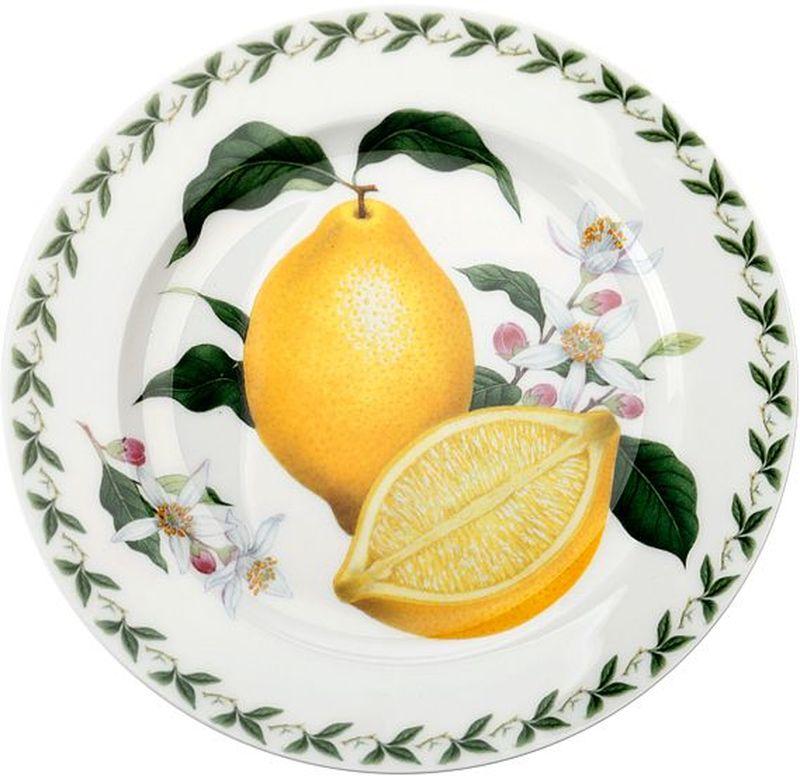 """Тарелка Maxwell & Williams """"Лимон"""" выполнена из высококачественного фарфора и имеет классическую круглую форму. Она прекрасно впишется в интерьер вашей кухни и станет достойным дополнением к кухонному инвентарю. Она подчеркнет прекрасный вкус хозяйки и станет отличным подарком."""