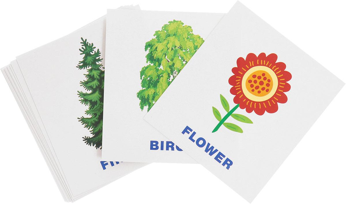 Айрис-пресс Обучающие карточки English Растения набор для игры карточная айрис пресс iq карточки развиваем мышление 25624