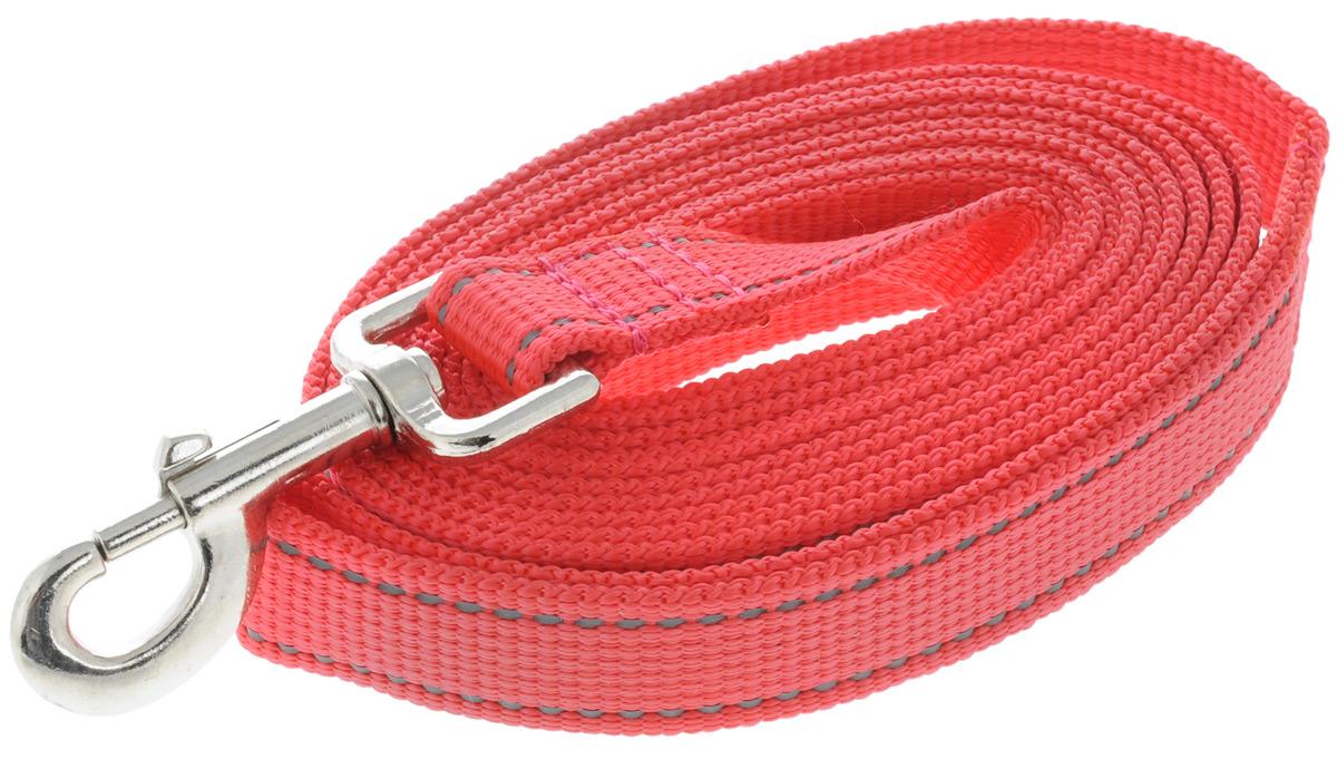 Поводок капроновый для собак Аркон, цвет: красный, ширина 2,5 см, длина 3 мпк3м25_красныйПоводок для собак Аркон изготовлен из высококачественного цветного капрона и снабжен металлическим карабином. Изделие отличается не только исключительной надежностью и удобством, но и привлекательным современным дизайном.Поводок - необходимый аксессуар для собаки. Ведь в опасных ситуациях именно он способен спасти жизнь вашему любимому питомцу. Иногда нужно ограничивать свободу своего четвероногого друга, чтобы защитить его или себя от неприятностей на прогулке. Длина поводка: 3 м.Ширина поводка: 2,5 см.