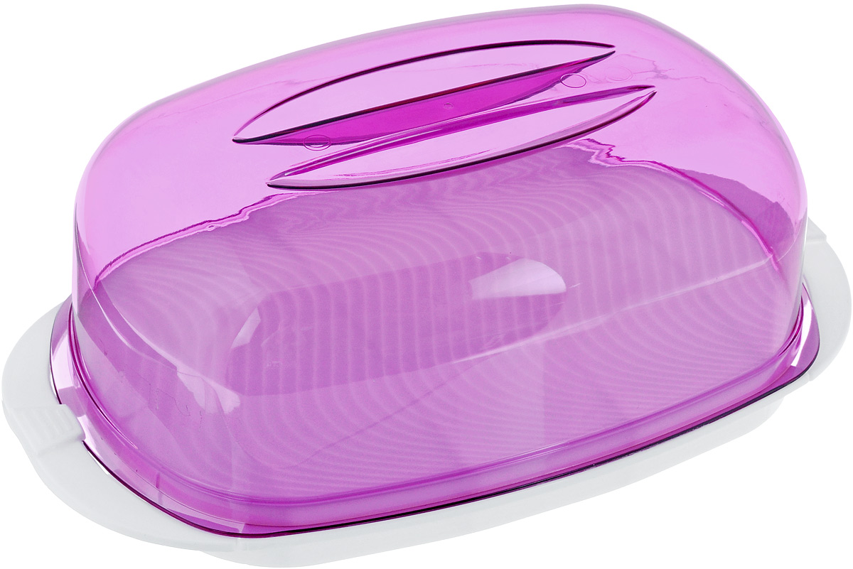 Контейнер Giaretti, цвет: фиолетовый, белый, 29,2 х 17 х 11 смGR1661Контейнер  Giaretti изготовлен из высококачественного пластика. Изделие идеально подходит для подачи готовых блюд на стол: ассорти сыров, пирожных, бутербродов для завтрака, а также для хранения продуктов в холодильнике.Контейнер имеет крышку, которая плотно закрывается на две защелки. Можно мыть в посудомоечной машине.Размер контейнера: 29,2 х 17 см. Высота контейнера: 11 см.