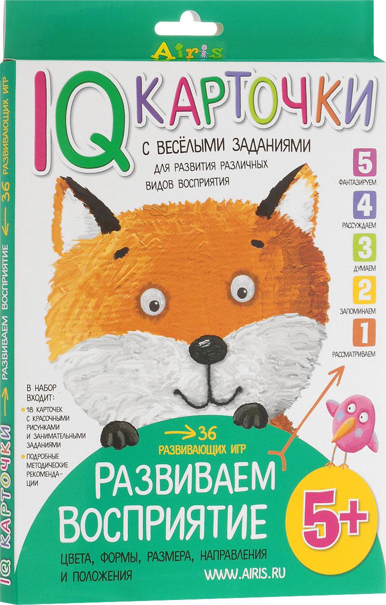 Айрис-пресс Обучающая игра Развиваем восприятие для детей от 5 лет айрис пресс обучающая игра мемори чей силуэт
