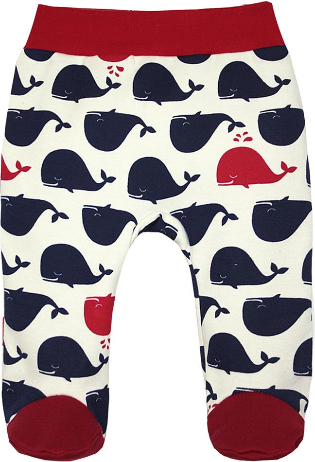 Ползунки для девочки КотМарКот, цвет: молочный, темно-синий, красный. 5109. Размер 565109Ползунки КотМарКот выполнены из натурального хлопка, приятного на ощупь. Модель со стандартной посадкой оформлена оригинальным принтом. На поясе расположена эластичная трикотажная резинка, которая плотно садится и не сковывает движение ребенка.