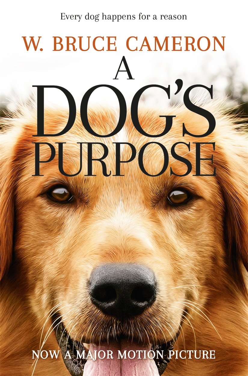 A Dog's Purpose reinventing metal the true story of pantera and the tragically short life of dimebag darrell