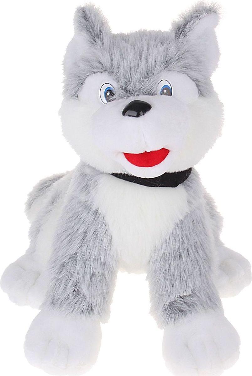 Sima-land Мягкая игрушка Собака Лайка 58 см sima land мягкая игрушка собака пятнашка 80 см