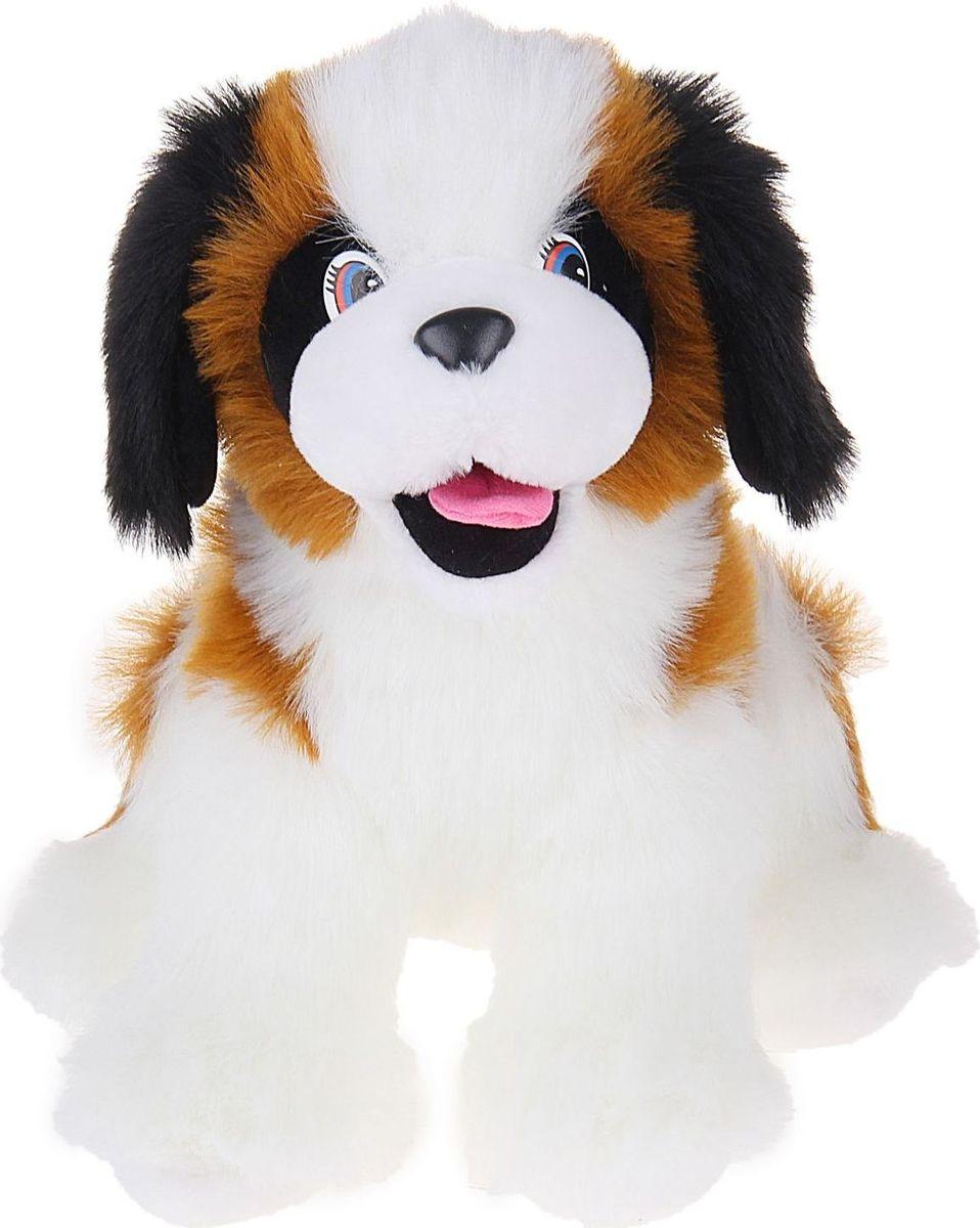 Sima-land Мягкая игрушка Собака Анзор 35 см sima land мягкая игрушка собака пятнашка 80 см