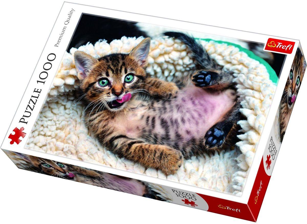 Trefl Пазл Веселый котенок