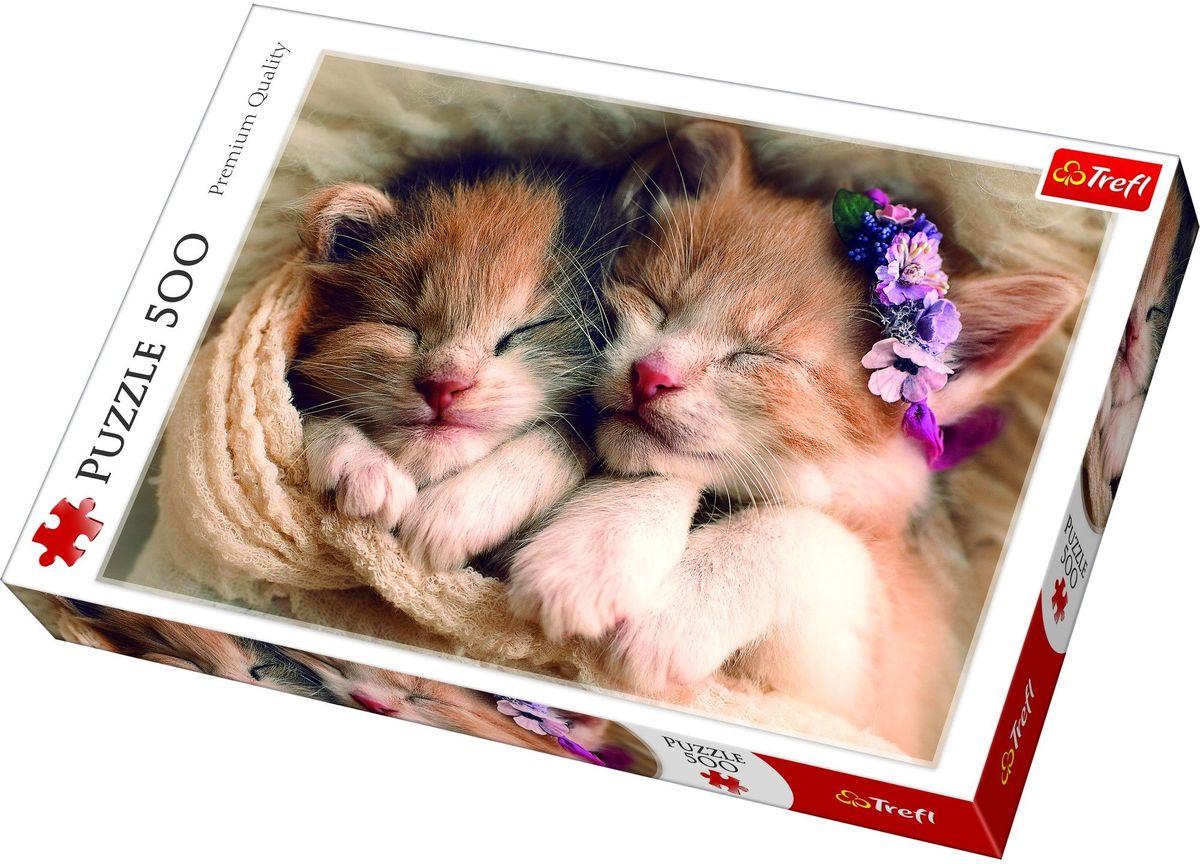 Trefl Пазл Спящие котята