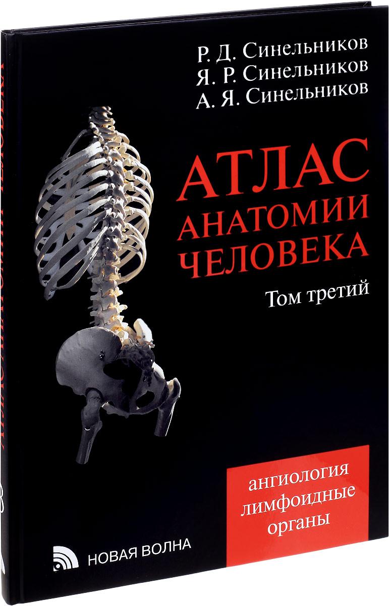 Атлас анатомии человека. В 4 томах. Том 3. Ангиология. Лимфоидные органы