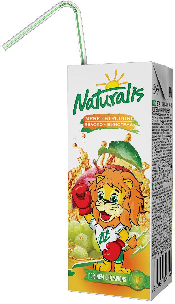 Naturalis нектар яблочно-виноградный осветленный, 0,2 лВГС_136Самое популярное соковое сочетание – это яблоко-виноград. Яблочный сок традиционно считается самым сбалансированным по наличию сахаров и органических кислот. Виноградный сок очень сладкий. И яблочный сок отлично смягчает вкус винограда. Яблочно-виноградный нектар Naturalis – самое популярное сочетание двух вкусов, богат микроэлементами и витаминами группы B. Naturalis в пакете 200 мл с трубочкой - это порционная упаковка, которая понравится вашему ребенку. Без ароматизаторов, красителей и консервантов.