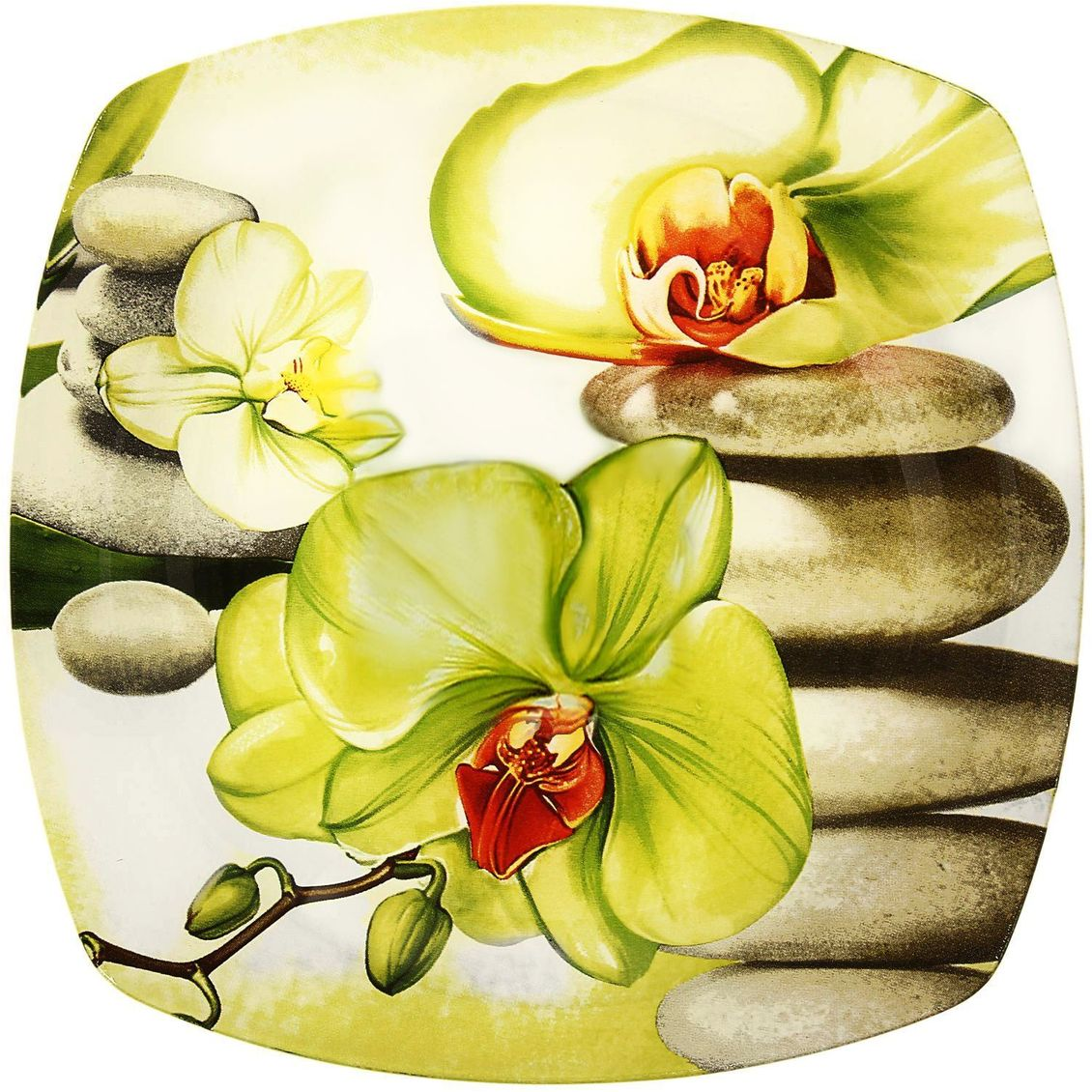 Тарелка десертная Доляна Зеленая орхидея, диаметр 20 см230519Тарелка Доляна с природными мотивами в оформлении разнообразит интерьер кухни и сделает застолье самобытным и запоминающимся. Качественное стекло не впитывает запахов, гладкая поверхность обеспечивает легкость мытья.Рекомендуется избегать использования абразивных моющих средств.Делайте любимый дом уютнее!