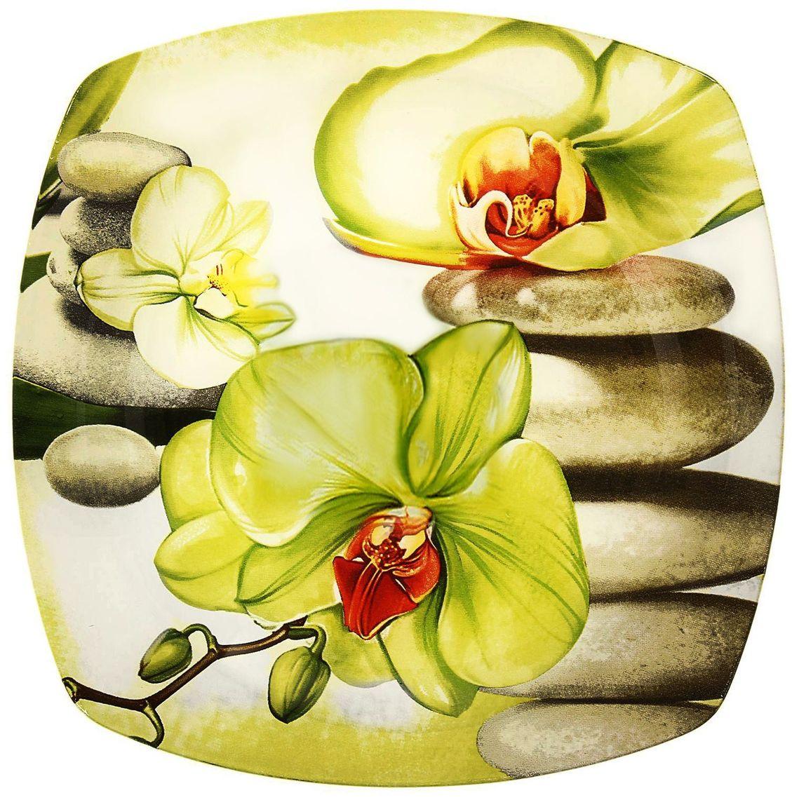 Тарелка Доляна Зеленая орхидея, диаметр 23 см230534Тарелка Доляна с природными мотивами в оформлении разнообразит интерьер кухни и сделает застолье самобытным и запоминающимся. Качественное стекло не впитывает запахов, гладкая поверхность обеспечивает легкость мытья.Рекомендуется избегать использования абразивных моющих средств.Делайте любимый дом уютнее!