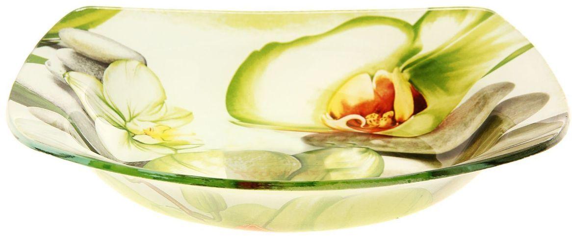 Тарелка глубокая Доляна Зеленая орхидея, 20 х 20 см230547Тарелка Доляна с природными мотивами в оформлении разнообразит интерьер кухни и сделает застолье самобытным и запоминающимся. Качественное стекло не впитывает запахов, гладкая поверхность обеспечивает легкость мытья.Рекомендуется избегать использования абразивных моющих средств.Делайте любимый дом уютнее!