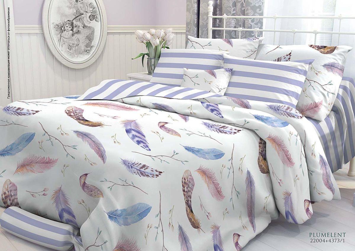 Комплект белья Verossa Plumelent, семейный, наволочки 70х70, 50х70707031Комплект постельного белья Verossa является экологически безопасным для всей семьи, так как выполнен из высококачественного перкаля. Перкаль - это тонкая и легкая хлопчатобумажная ткань высокой плотности полотняного переплетения, сотканная из пряжи высоких номеров. При изготовлении перкаля используются длинноволокнистые сорта хлопка, что обеспечивает высокие потребительские свойства материала. Несмотря на свою утонченность, перкаль очень практичен - это одна из самых износостойких тканей для постельного белья.Приобретая комплект постельного белья Verossa, вы можете быть уверенны в том, что покупка доставит вам и вашим близким удовольствие и подарит максимальный комфорт.Советы по выбору постельного белья от блогера Ирины Соковых. Статья OZON Гид