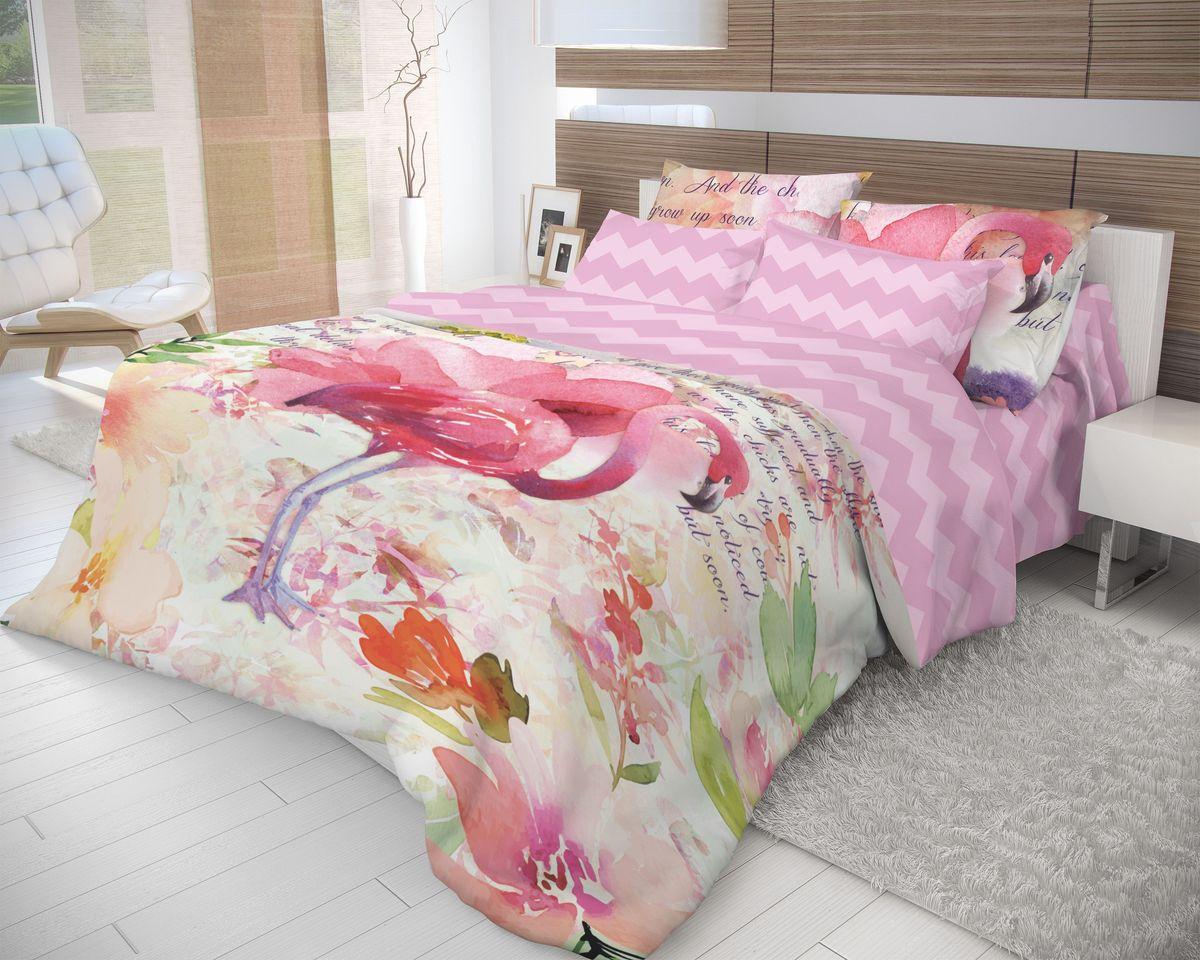 Комплект белья Волшебная ночь Flamingo, 2-спальный с простыней на резинке, наволочки 70х70, цвет: светло-сиреневый, розовый. 710584710584Роскошный комплект постельного белья Волшебная ночь Flamingo выполнен из натурального ранфорса (100% хлопка) и оформлен оригинальным рисунком. Комплект состоит из пододеяльника, простыни и двух наволочек. Ранфорс - это новая современная гипоаллергенная ткань из натуральных хлопковых волокон, которая прекрасно впитывает влагу, очень проста в уходе, а за счет высокой прочности способна выдерживать большое количество стирок. Высочайшее качество материала гарантирует безопасность.