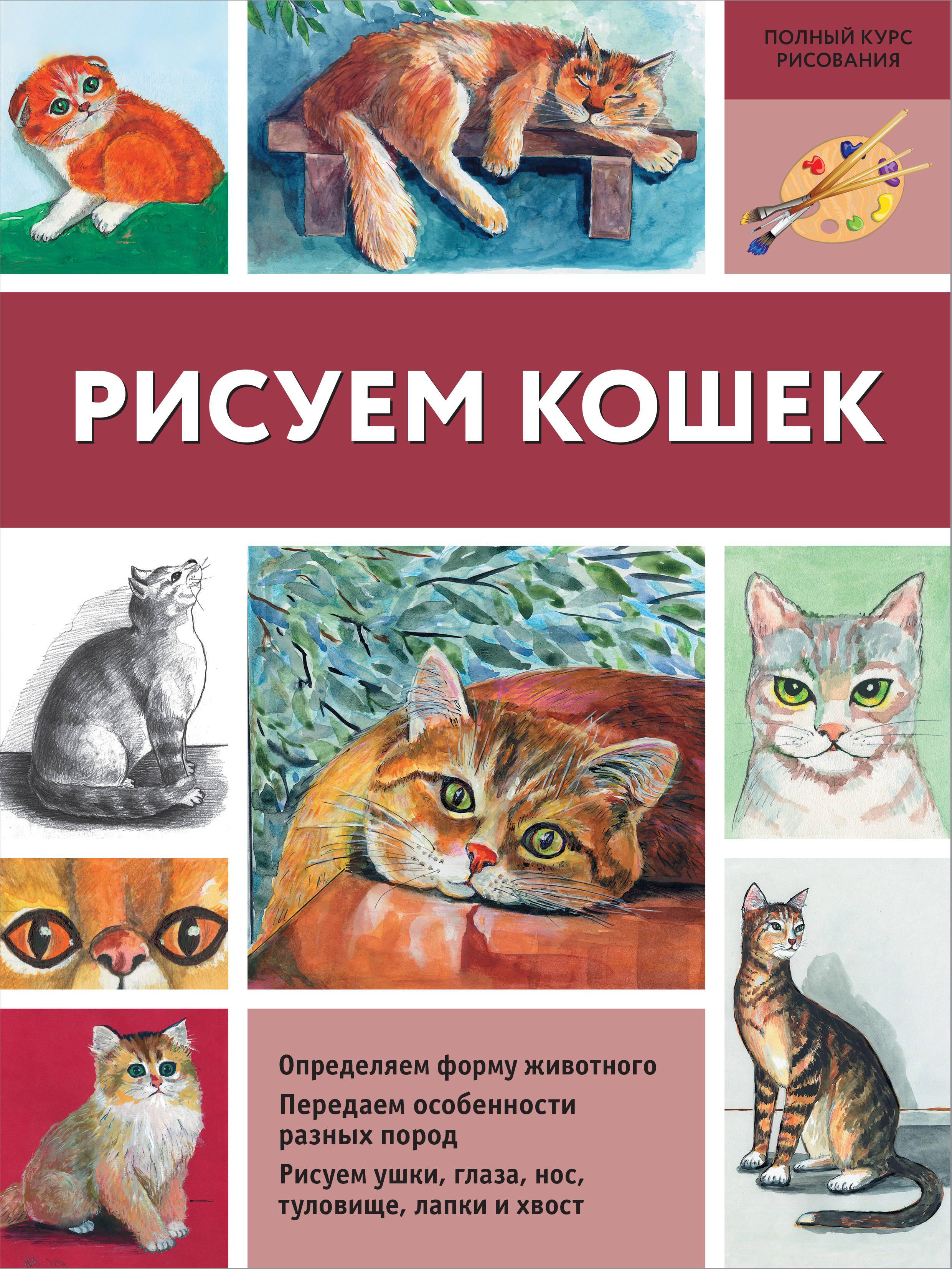Рисуем кошек. Нина Щербакова