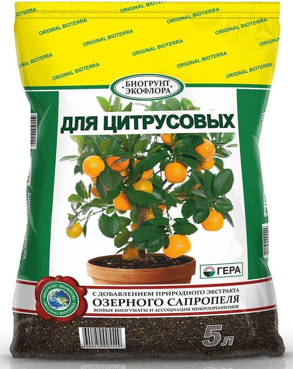 Биогрунт Гера Для цитрусовых, 5 л1042Полностью готовый к применению грунт Гера Для цитрусовых подходит для выращивания взимнем саду и комнатном цветоводстве цитрусовых растений, таких, как лимон, апельсин,мандарин, цитрон, лайм, грейпфрут, кумкват, помело и др.; проращивания семян; подсыпки приоголении корней, усадке грунта; в качестве подкормки. Состав: смесь торфов различной степени разложения, сапропель, песок речной термическиобработанный, гумат калия, комплексное минеральное удобрение, вермикулит/агроперлит, мукаизвестняковая (доломитовая). Товар сертифицирован.